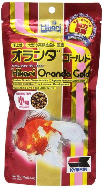 Hikari Oranda Gold Mini